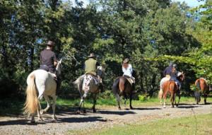 Trovare Scuola di Equitazione Roma