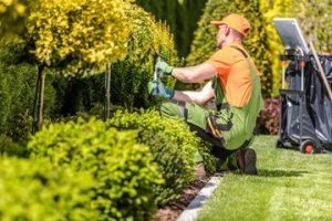 Costo Manutenzione Giardini Roma
