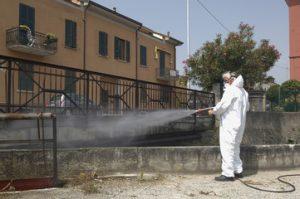 Servizio Di Derattizzazione Blatte A Roma